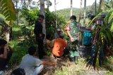 Tiga bulan terakhir, sudah lima ekor ternak dimangsa harimau di Agam