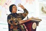 Enam staf KLHK meninggal kecelakaan di TN Sebangau