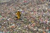 Timbunan sampah nasional