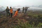 Puluhan Ha lahan terbakar di Nagan Raya Aceh