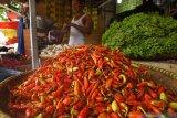 Kementerian Pertanian jamin ketersediaan pasokan cabai aman hingga Lebaran