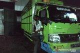 Polisi Kehutanan amankan tiga truk bermuatan kayu ilegal di Banggai