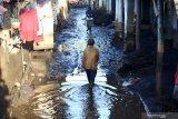 Warga melintas di area terdampak banjir bandang di Kalisat, Ijen, Bondowoso, Jawa Timur, Minggu (15/3/2020). Banjir bandang yang terjadi pada sabtu (14/3) itu, mengakibatkan sebanyak 316 rumah warga di desa Kalisat dan desa Sempol tertimbun material pasir dan kayu. Antara Jatim/Budi Candra Setya/zk