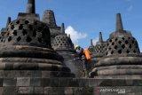 Candi Borobudur disemprot disinfektan