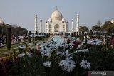 Taj Mahal kembali dibuka, pengunjung pun diwajibkan pakai masker
