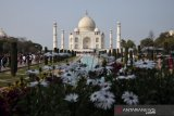 India buka kembali Taj Mahal meski kasus  infeksi COVID-19 melonjak