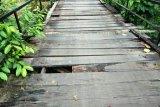 Terjatuh dari jembatan setinggi delapan meter, balita ini alami patah tulang