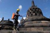 Penyemprotan disinfektan di Candi Borobudur