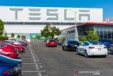 Tesla minta pegawainya kembali bekerja minggu depan