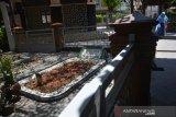 Peziarah berada di area makam Presiden RI keempat KH Abdurrahman Wahid atau Gus Dur di Pesantren Tebuireng Jombang, Jawa Timur, Rabu (18/3/2020). Wisata religi makam Gus Dur ditutup sementara dari peziarah umum mulai 16 Maret 2020 sampai waktu yang belum ditentukan. Penutupan ini sebagai upaya Pengasuh Pondok Pesantren Tebuireng dalam mencegah potensi penyebaran virus corona atau COVID-19. Antara Jatim/Syaiful Arif/zk.