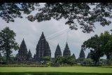 Foto suasana Taman Wisata Candi Prambanan di Sleman, DI Yogyakarta, Jumat (20/3/2020). Pihak PT Taman Wisata Candi (TWC) menutup sementara Candi Borobudur, Candi Prambanan dan Candi Ratu Boko menutup sementara dari hari Jumat (20/3/2020) hingga Minggu (29/3/2020) untuk mencegah penyebaran virus Corona atau COVID-19 di destinasi pariwisata. ANTARA FOTO/Hendra Nurdiyansyah/nym.