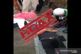 Polda Papua minta warga jangan sebar hoaks soal tanggap darurat