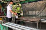 Yogyakarta menyiapkan empat opsi alokasi anggaran penanganan COVID-19