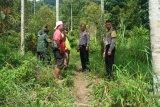 Polisi bubarkan warga berburu babi cegah COVID-19
