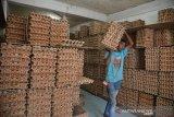 Pedagang mengangkut telur ayam untuk pesanan konsumen di salah satu toko grosir sembako, Pasar Kampung Baru, Banda Aceh, Rabu (25/3/2020). Pedagang grosir mengakui harga telur ayam belum stabil pada kisaran Rp40.000 per papan atau masih tinggi dibanding harga normal Rp36.000 per papan karena distribusi telur ayam dari luar provinsi Aceh tersendat dan stok juga berkurang ditengah situasi mewabahnya virus COVID-19. Antara Aceh/Ampelsa.