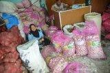 Pedagang mensortir bawang putih impor asal China di Pasar Tradisional Peunayung, Banda Aceh, Kamis (26/3/2020). Pasokan bawang putih di pusat pasar tradisional itu kembali lancar dengan harga stabil Rp38.000 perkilogram, sedangkan sebelumnya sempat menguat seharga Rp50.000 hingga Rp65.000 perkilogram. Antara Aceh/Ampelsa.
