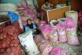 Tak dapat izin impor, Bulog sulit stabilkan harga bawang putih di pasaran