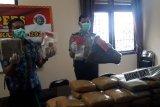 Polda Lampung tangkap 442 tersangka selama dua pekan pada Ops Antik