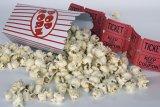 Sempat dibuka, bioskop-bioskop di China kembali ditutup