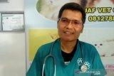 Praktisi ingatkan ancaman zoonosis pada musim pancaroba