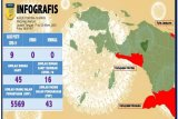 Kasus positif covid-19 bertambah jadi sembilan di Papua