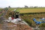 Empat buruh tani di Demak Jateng meninggal tersambar petir