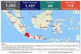 Update COVID-19: 1.285 positif, 64 sembuh dan 114 meninggal di Indonesia