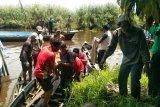 Korban terkaman buaya di Inhil ditemukan tewas. Begini kondisinya