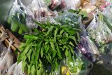 Permintaan sayuran hijau di Bandarlampung meningkat imbas dari merebaknya virus Corona