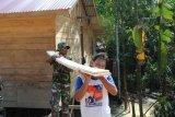 Satgas TMMD bantu pekerjaan masyarakat di Sekura