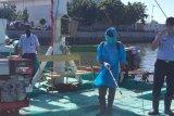 Operasional pelabuhan perikanan sesuai protokol pencegahan COVID