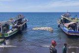 Pemkab Mitra sediakan cold storage  tampung produksi  ikan nelayan