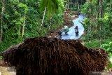 TANAH LONGSOR DI BANYUWANGI. Warga melintas di area longsor di Kluncing, Banyuwangi, Jawa Timur, Rabu (4/3/2020). Tanah longsor yang membawa material lumpur dan pepohonan pada selasa (3/3) malam akibat hujan deras itu, mengakibatkan sebagian akses jalan tertutup material longsoran dan menutup saluran air. Antara Jatim/Budi Candra Setya/zk