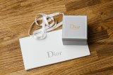 Dior akan gelar pagelaran busana 'semi' digital