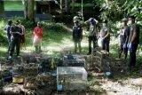 56 ekor burung dilepasliarkan BKSDA Bengkulu di TNBBS