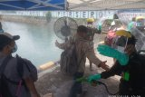 Puluhan ODP di Papua Barat pulih setelah isolasi 14 hari