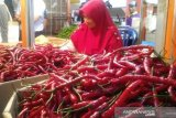 The price of red chilies and onions downed, Padang notes 0.02 percent deflation in March 2020