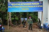 Gerakan ketahanan pangan TNI AL-Pemkot Bitung