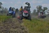 Banyuasin  pada Mei 2020 diprakirakan panen 487.500 ton beras