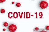 Kasus positif COVID-19 Kalteng meningkat menjadi 19, Kotim kini menjadi zona merah