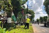 Proses lelang barang dan jasa di  Pemkot Yogyakarta masih berjalan