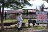 Kebun binatang Kasang Kulim Kampar disemprotkan disinfektan, begini tujuannya