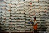 Bulog: Pandemi COVID-19 sebabkan harga beras naik meski panen raya