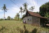 Perangkat desa menyemprotkan cairan disinfektan di rumah yang disiapkan sebagai ruang isolasi mandiri di Desa Kemiren, Banyuwangi, Jawa Timur, Rabu (8/4/2020). Pemerintah daerah setempat, mengintruksikan agar setiap desa menyediakan tempat isolasi mandiri untuk warga yang berstatus Orang Dalam Pemantauan (ODP) atau perantau dari wilayah zona merah, sebagai upaya pencegahan penyebaran COVID-19. Antara Jatim/Budi Candra Setya/zk.