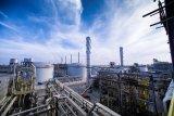 Harga minyak jatuh, tertekan pasokan berlimpah, keraguan penurunan produksi