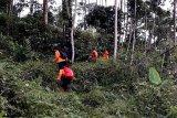 Pencarian petani Banyumas yang diduga hilang di kebun dilanjutkan