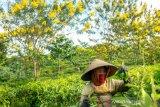 189.586 pekerja sektor pariwisata diusulkan sebagai penerima Kartu Prakerja