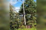 Teknisi instalasi listrik tewas tersetrum di atas tiang