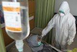 Pasien Corona tak jujur dengan riwayat penyakitnya bisa dipindana