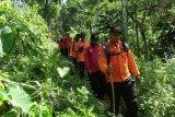 Hari ketujuh,  seorang petani diduga hilang di kebun Batulaya Banyumas belum ditemukan